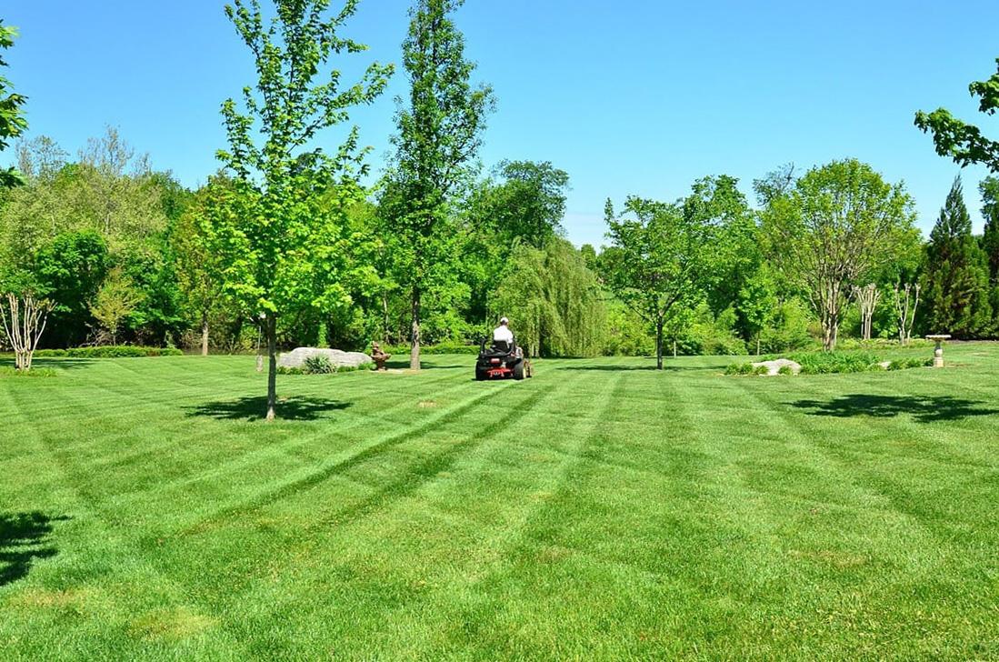 Laracca Lawn Maintenance